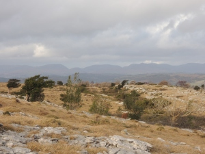 End of the year on Whitbarrow (South Lakeland)